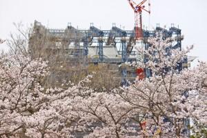 08_改修が終盤の姫路城