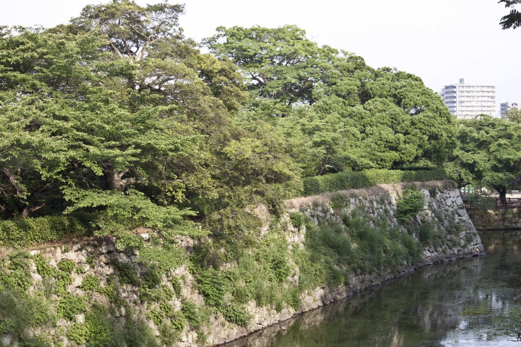 08_深緑の季節