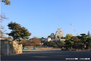 17_三の丸公園全景(G)