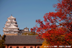 06_姫路城の秋