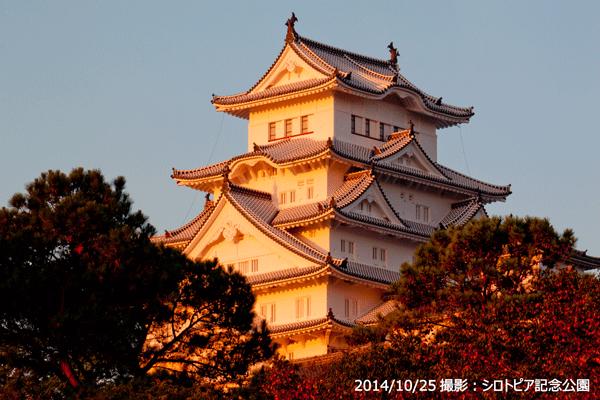 05_姫路城朝日斜景