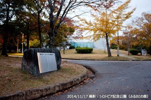 08_ふるさとの森