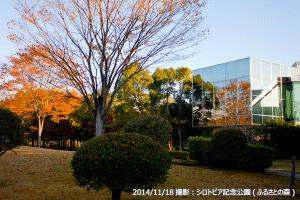 09_シロトピアふるさとの森・博物館