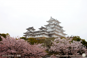 cherry-blossoms-end2015_07
