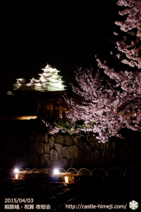cherry-blossoms-night2015_28