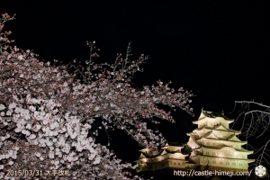 cherry-blossoms-ready_08