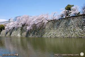 cherry_blossoming2015_17