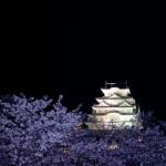 eye_night_vs-sannomaru