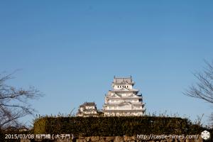 vs-sakura_gate-bridge_04