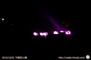 pink_lightup_07