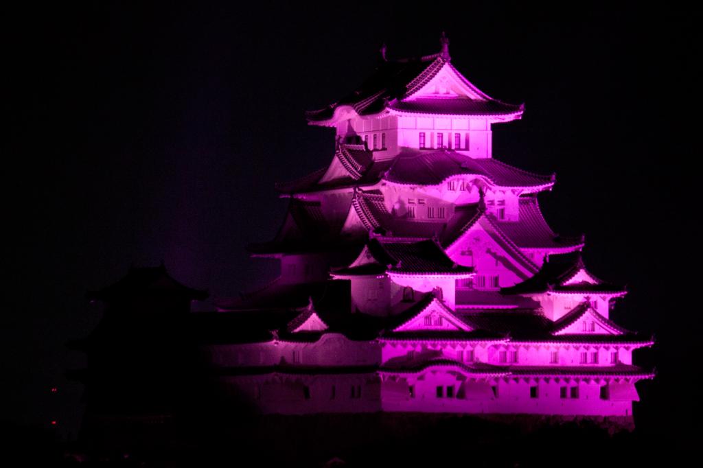 pink_lightup_12_2015