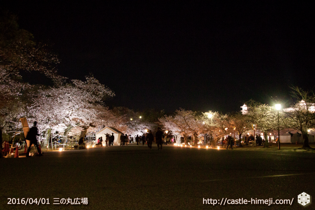 cherry-blossoms-light-up-off_01