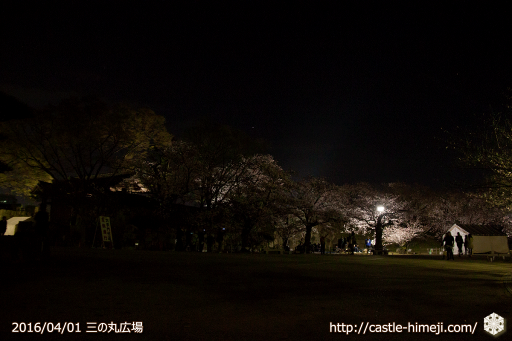 cherry-blossoms-light-up-off_03