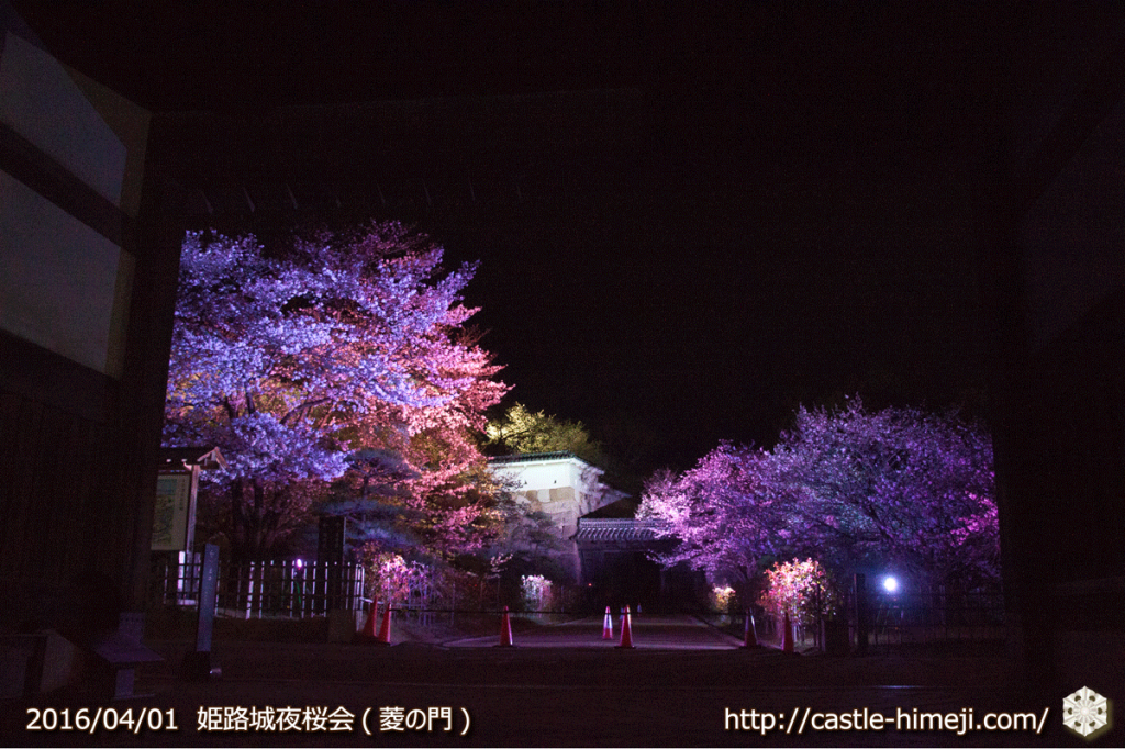 cherry-blossoms-night2016-white_02