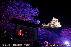 cherry-blossoms-night2016-white_04