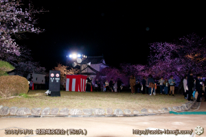 cherry-blossoms-night2016-white_10