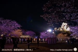 cherry-blossoms-night2016-white_26