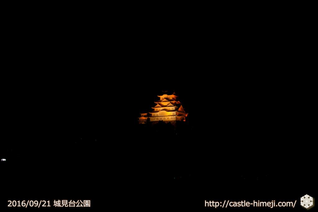 10views_orange-shiromidai_01