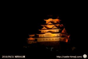 10views_orange-shiromidai_02