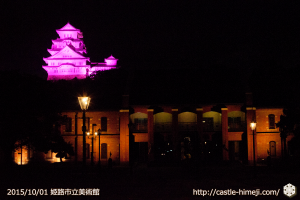 10views_pink-museum_01