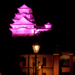 eye_10views_pink-museum
