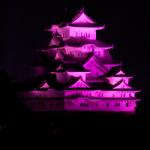eye_10views_pink-otokoyama