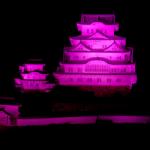 eye_10views_pink-sannnomaru