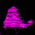eye_vs_pink-museum-south