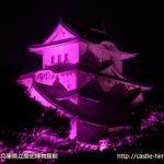 vs_pink-history-museum_02
