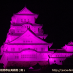 vs_pink-museum-south_02
