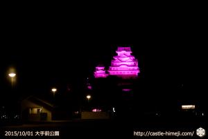 vs_pink-ootemae-park_01