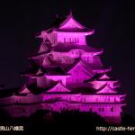 vs_pink-otokoyama_hachiman_02