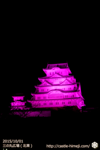 vs_pink-sannnomaru-ne_01