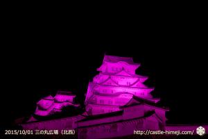 vs_pink-sannnomaru-nw_02