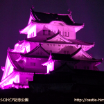 vs_pink-shirotopia-park_04