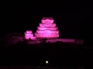 姫路城ピンクライトアップ2016(速報写真)