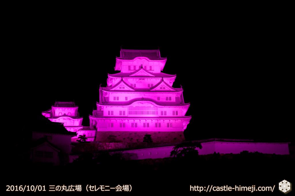 pink-lightup2016_03