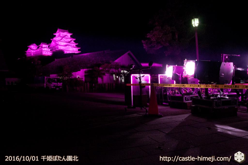 pink-lightup2016_06