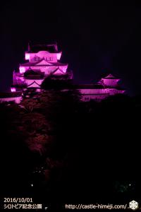 pink-lightup2016_10