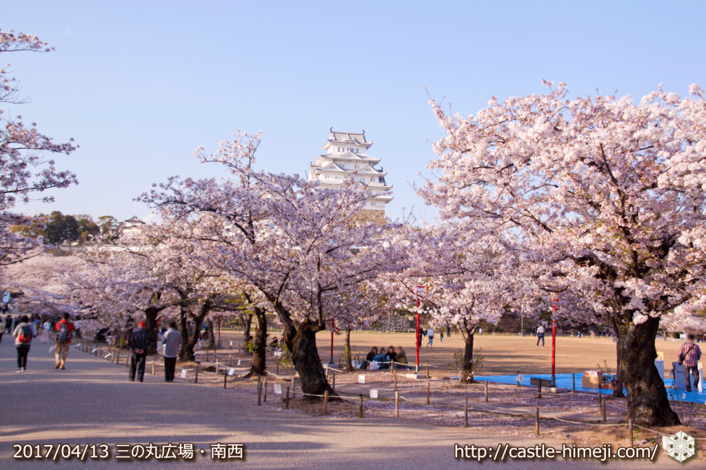 cherry-blossoms-end_02