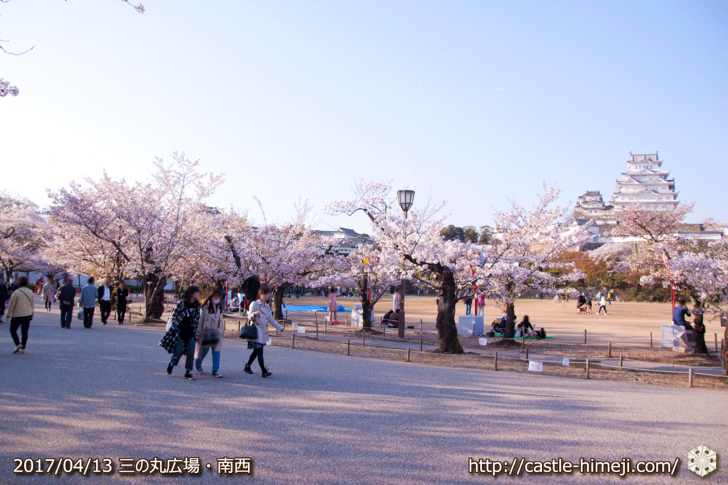 cherry-blossoms-end_10