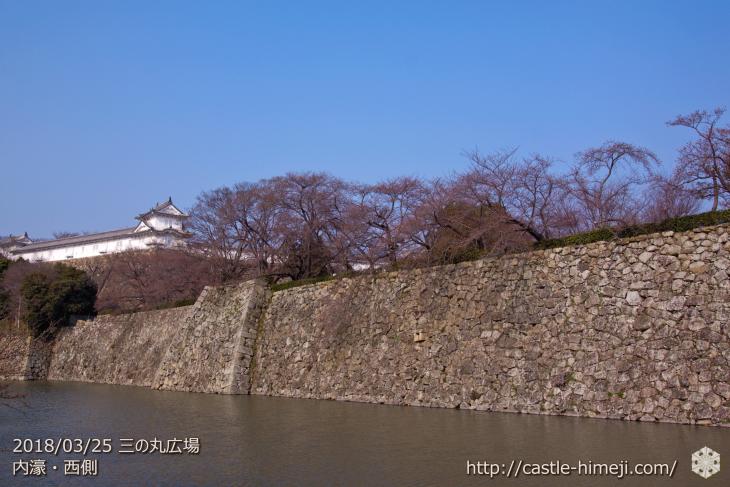 cherry-blossoms20180325_uchi_08
