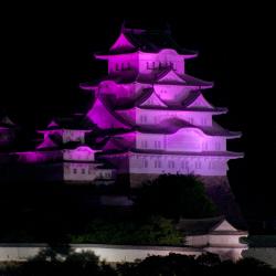 IBD(炎症性腸疾患 患者会)姫路さんが紫ライトアップの経緯をご紹介されていました(姫路城)