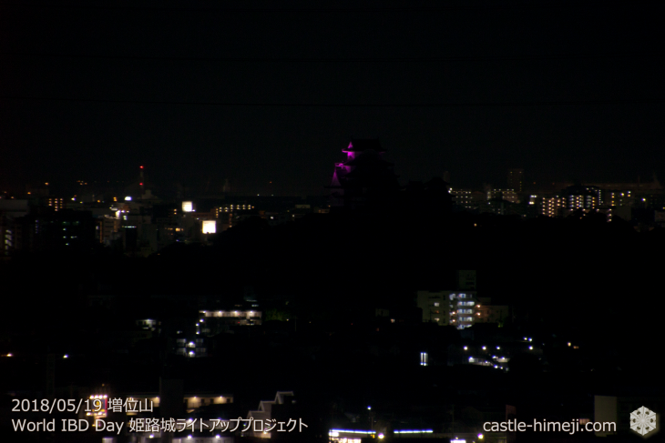 purple-lightup2018_16