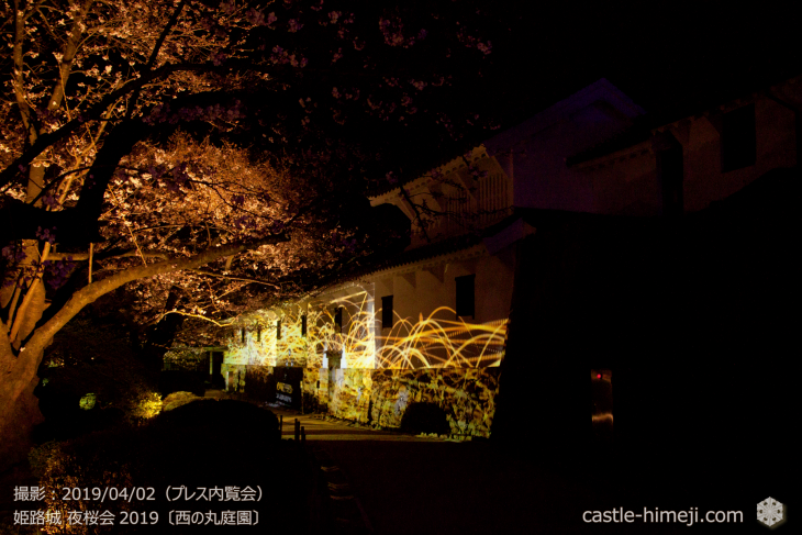 cherry-blossoms-night_0st_16