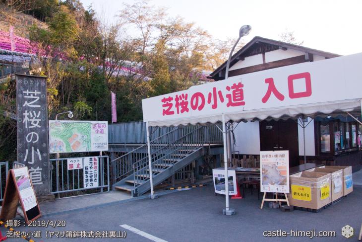 cherry-yamasa20190420_05
