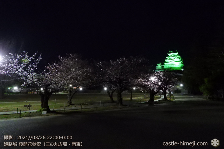 08_三の丸広場-南東・姫路城・2021.3.26桜開花状況