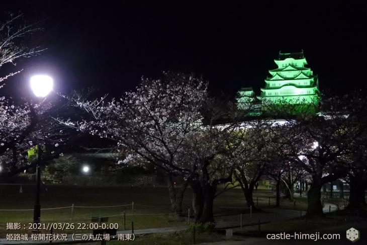 09_三の丸広場-南東・姫路城・2021.3.26桜開花状況