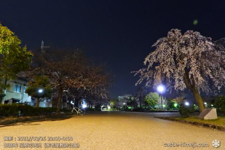14_家老屋敷跡公園-東より西・姫路城・2021.3.26桜開花状況